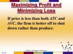 maximizing profit and minimizing loss57
