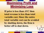 maximizing profit and minimizing loss58