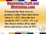 maximizing profit and minimizing loss59