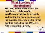 what survives of marginalism79