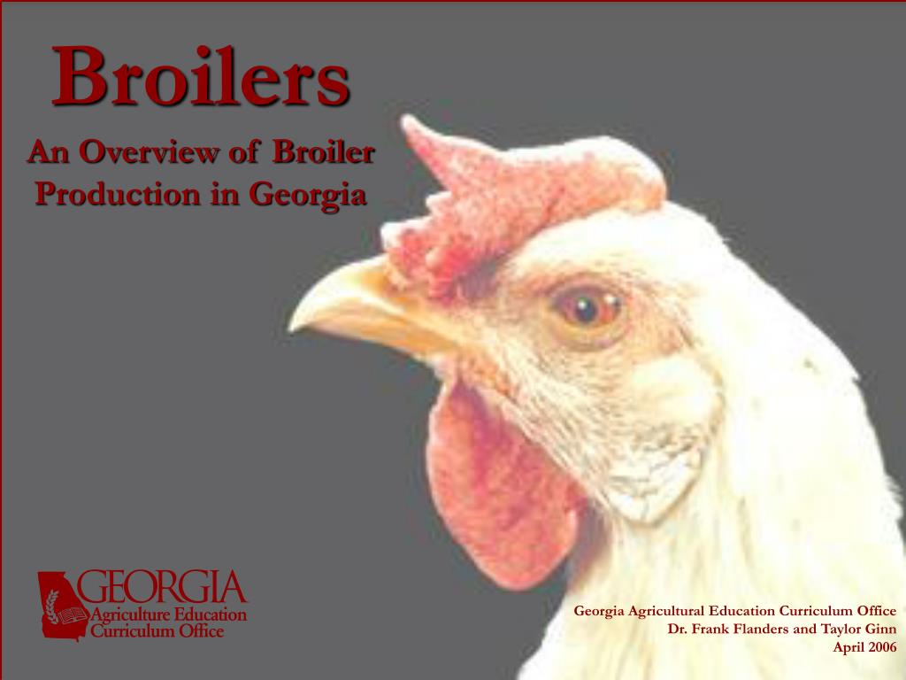 broilers an overview of broiler production in georgia l.