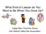 what kind of lawyer do you want to be when you grow up