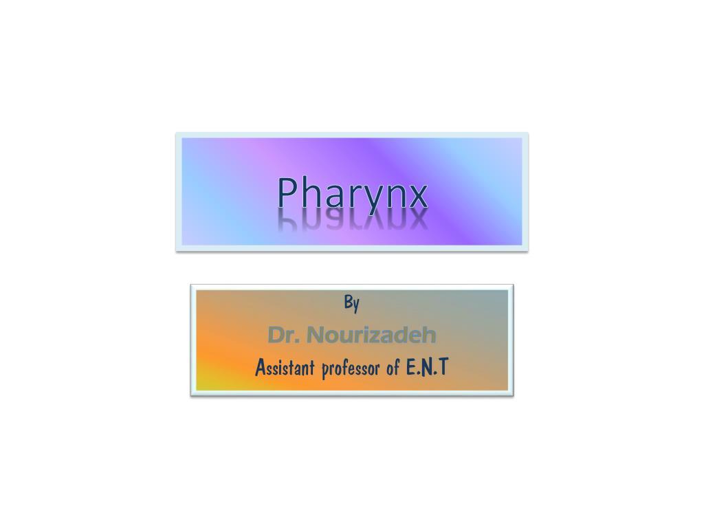 pharynx l.