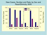 new cases number and rate by sex and race ethnicity 2005