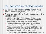 tv depictions of the family38