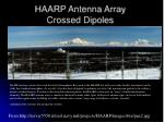 haarp antenna array crossed dipoles