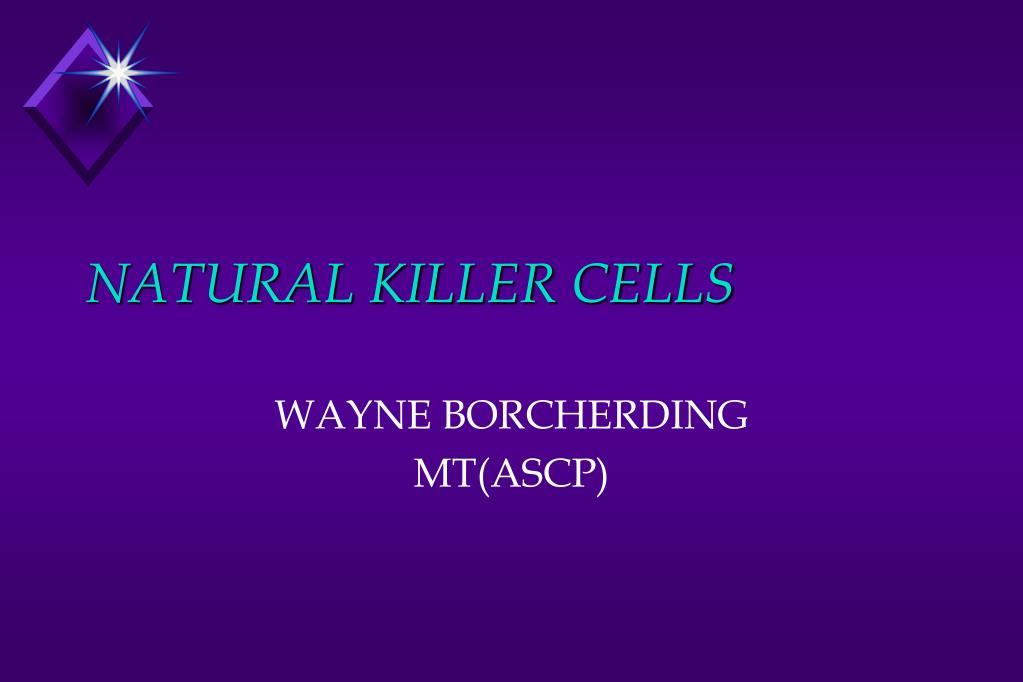 natural killer cells l.