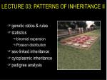 lecture 03 patterns of inheritance ii