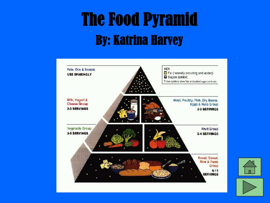 the food pyramid l.