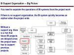 bi support organization big picture