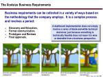the xcelsius business requirements