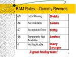 bam rules dummy records