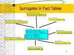 surrogates in fact tables