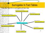 surrogates in fact tables28