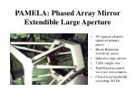 pamela phased array mirror extendible large aperture