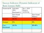 success indicator dynamic indicators of basic literacy skills