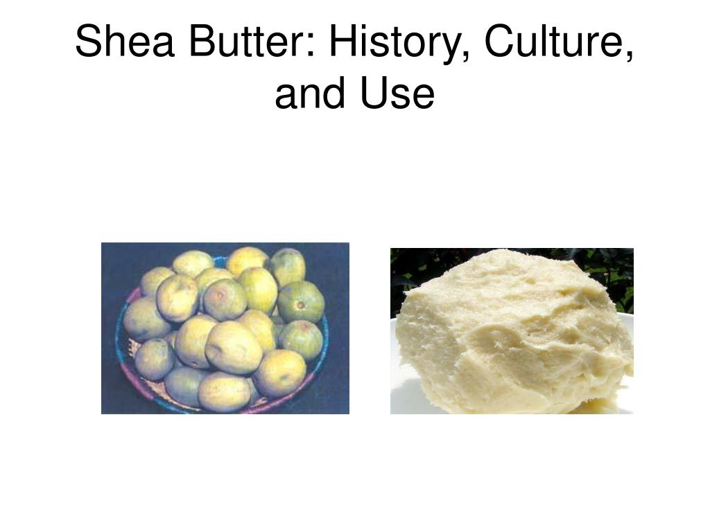 shea butter history culture and use l.