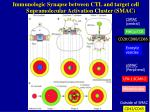 supramolecular activation cluster smac