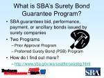 what is sba s surety bond guarantee program