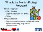 what is the mentor prot g program