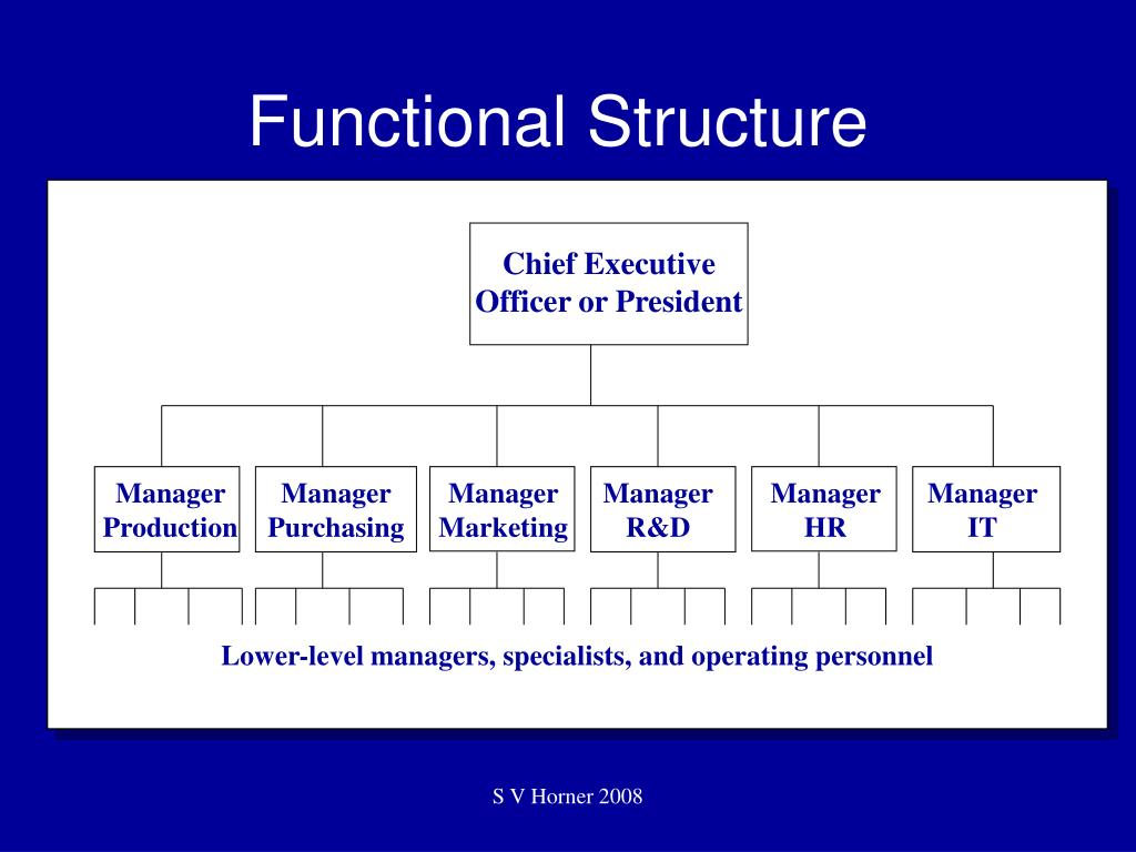 Chief Executive Officer or President