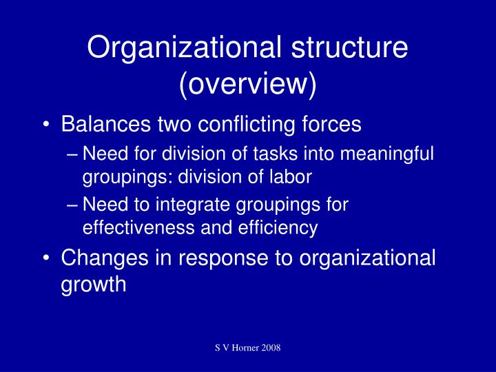 Organizational structure overview3