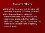 tsunami effects