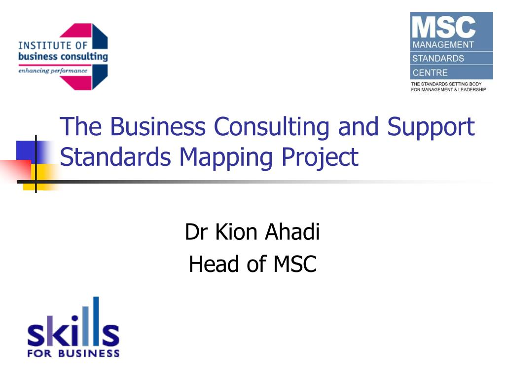 the business consulting and support standards mapping project l.