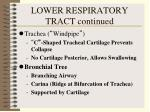 lower respiratory tract continued18