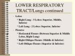 lower respiratory tract lungs continued27