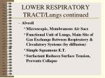 lower respiratory tract lungs continued29