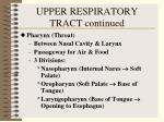 upper respiratory tract continued10