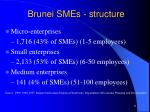 brunei smes structure