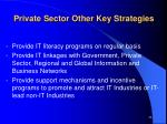 private sector other key strategies