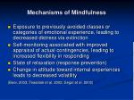 mechanisms of mindfulness