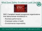 what does safety excellence look like