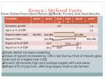 kenya stylized facts