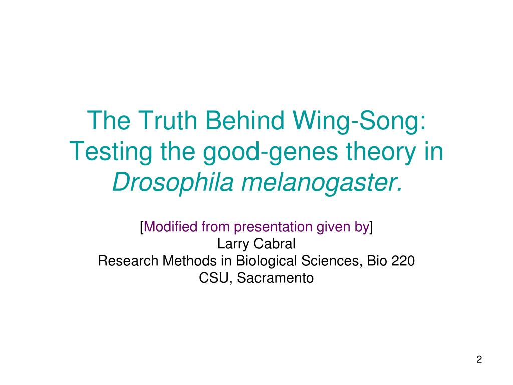 The Truth Behind Wing-Song: