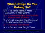 which stage do you belong to