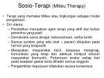 sosio terapi milieu therapy