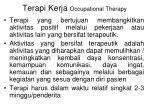 terapi kerja occupational therapy