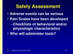 safety assessment34