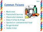 common poisons