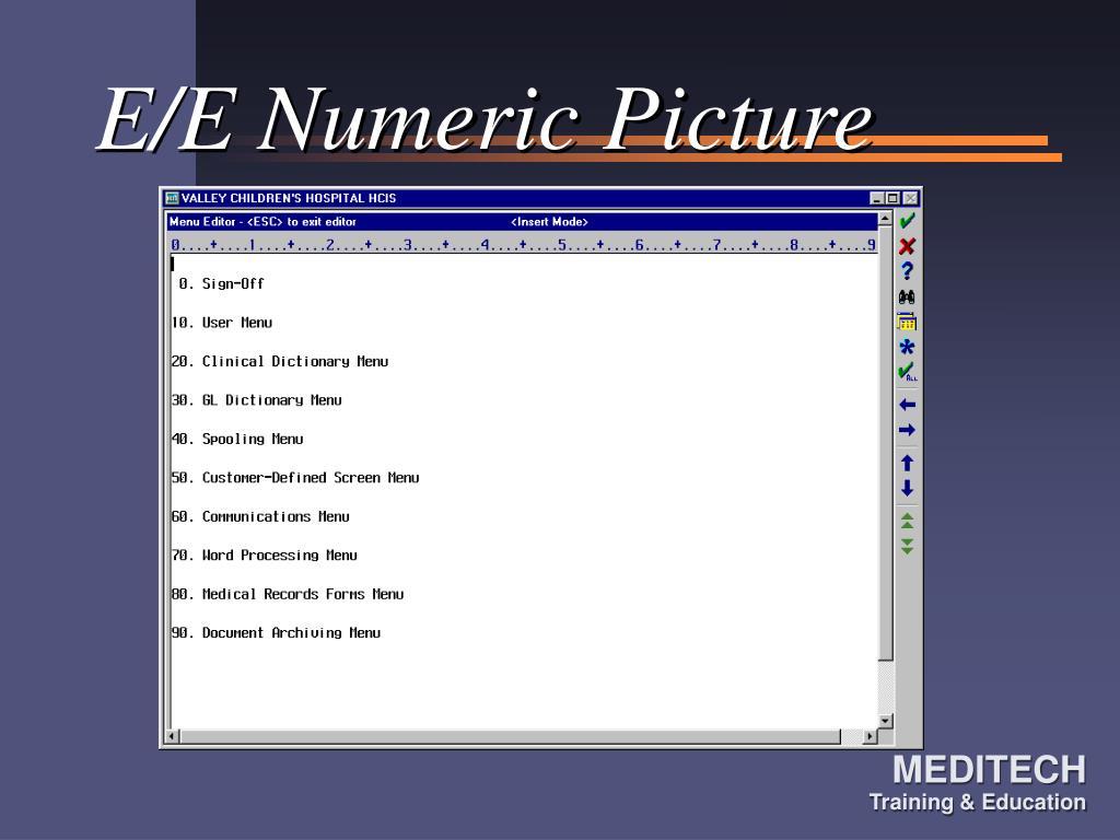 E/E Numeric Picture