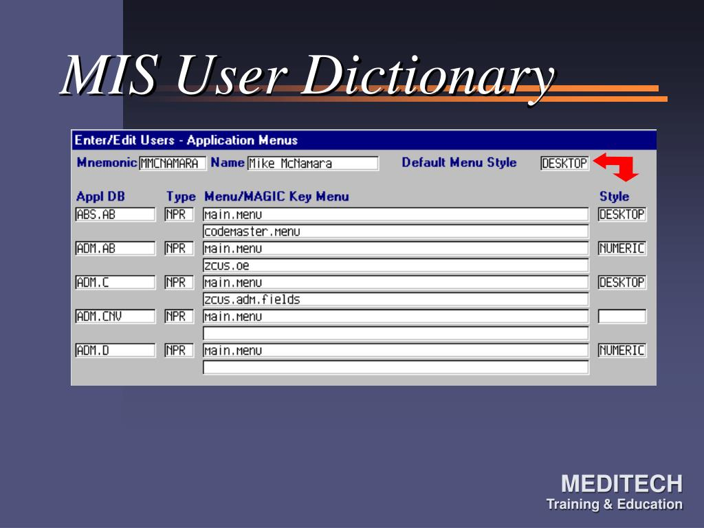 MIS User Dictionary