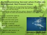 profit maximizing harvest when profits can be invested net present value