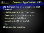 common type system cts