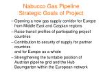 nabucco gas pipeline strategic goals of project