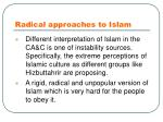 radical approaches to islam