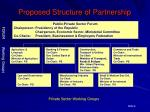 proposed structure of partnership